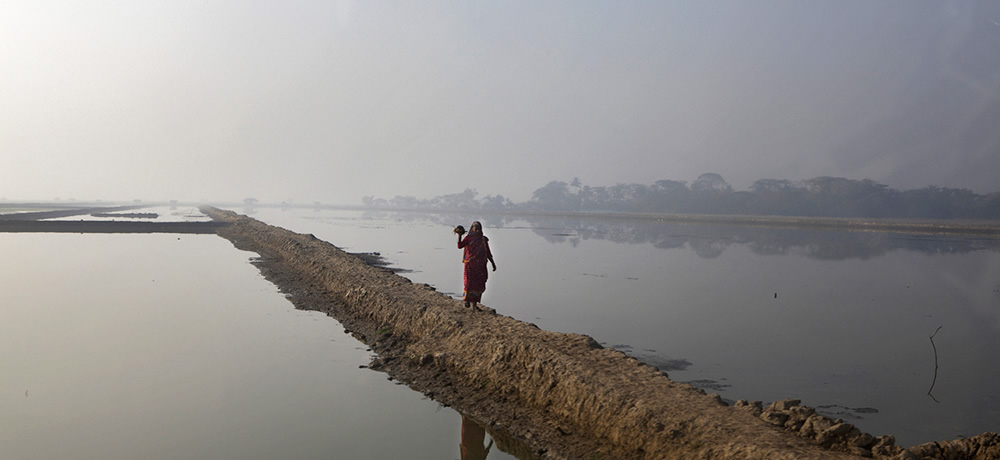 A solitary woman navigates her way home through a vast network of flooded fields in south- west Bangladesh