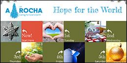A Rocha Advent calendar