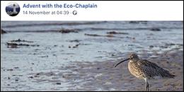 Eco-Congregation Scotland