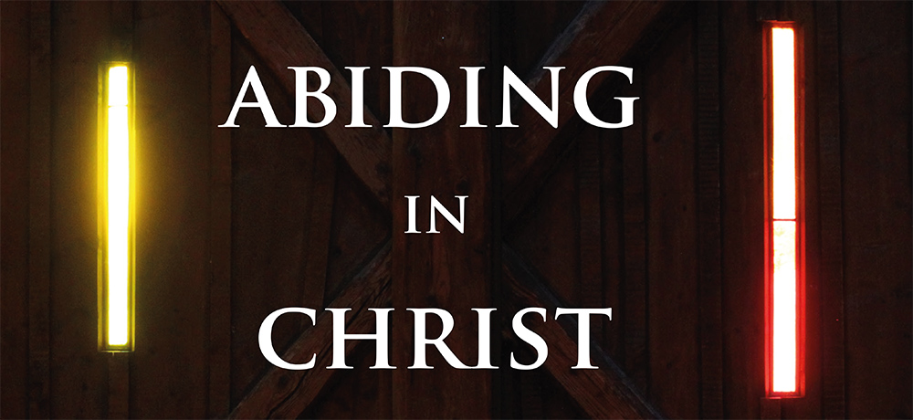 Week of Prayer for Christian Unity 2021 - Abiding in Christ